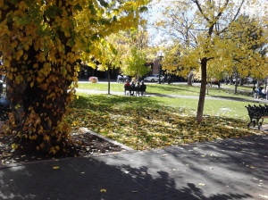 AUTUMN AWESOME SANTA FE, NM